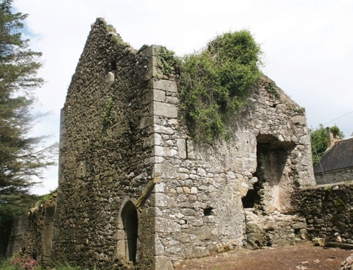 Know Your Place Talk: The Kings Of Barrystown