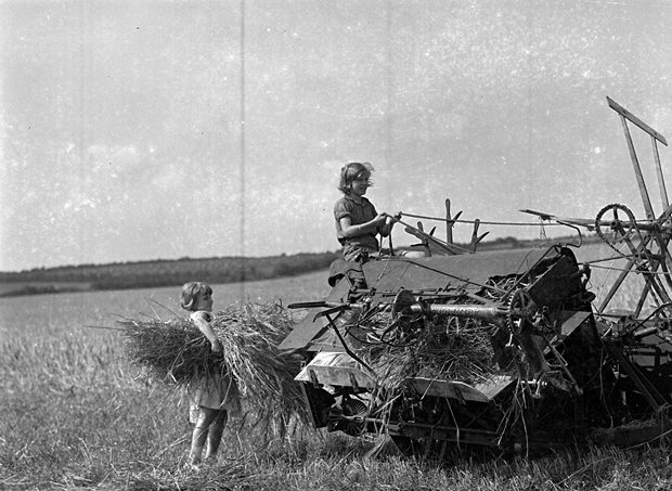 Reaper & Binder Tractor 1946, Bannow Historical Society Wexford